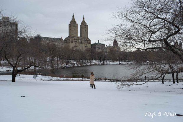 En el Central Park, otro viaje, invierno parecido