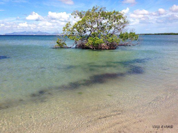 La Playa El Oasis es así, como su nombre