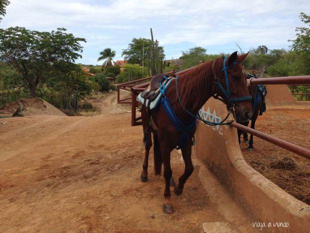 En Cabatucan, antes de salir al paseo a caballo