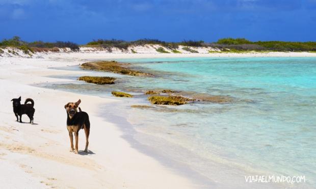 "La orilla de la playa ""de atrás"""