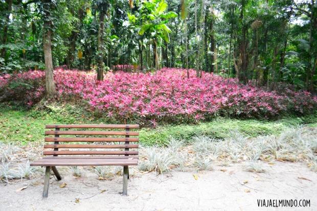 Un cuadro vivo en el Parque de la Flora Exótica Tropical