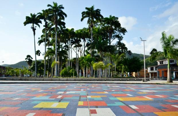 Sí, este es el Jardín de Calas que llena de colores a Río Caribe