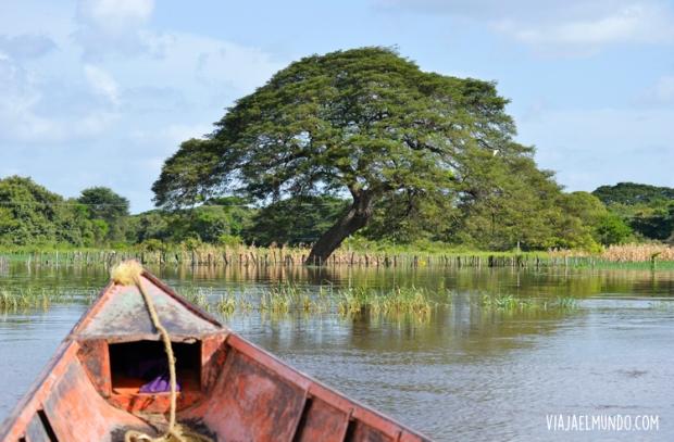 Navegando el estero de Camaguán